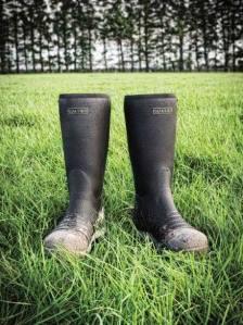 Quatro Dairy Boots